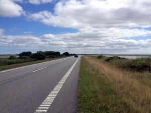 Vejen ved Løgstør Bredning